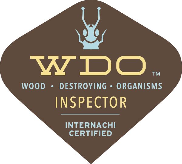 WDI wood destroying insect inspection - termite inspection Albuquerque-Santa Fe