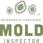 Albuquerque mold inspection near me